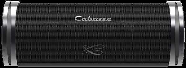 Cabasse Swell