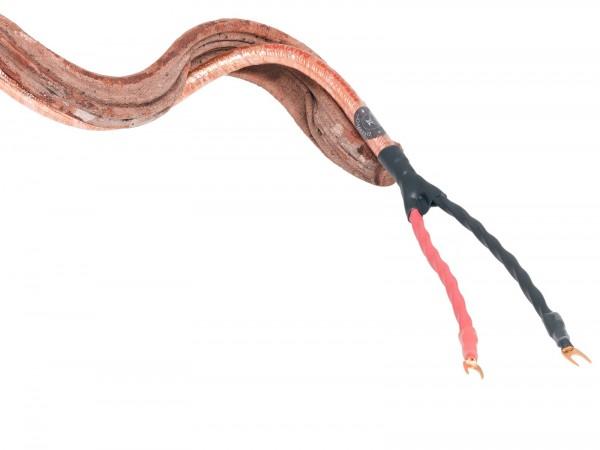 Ensemble Dalvivo speaker cable